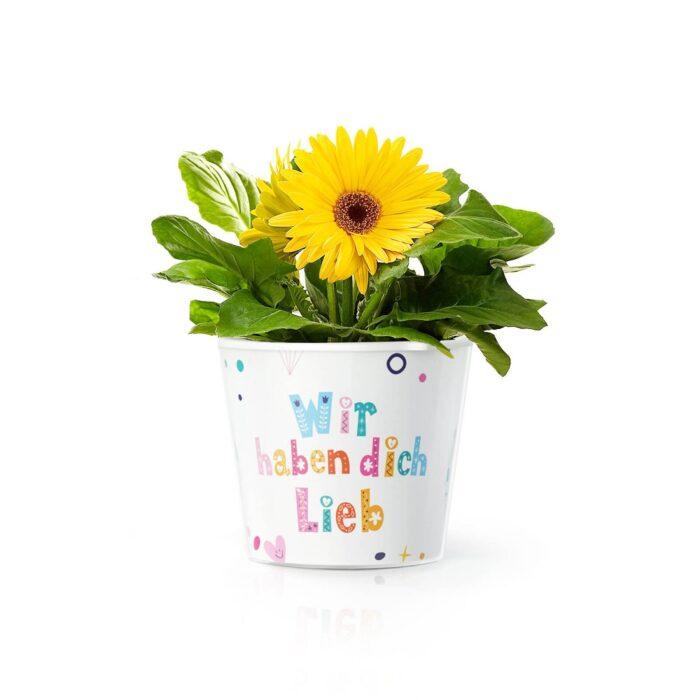 Geschenkidee zum Muttertag: Blumentopf mit Foto